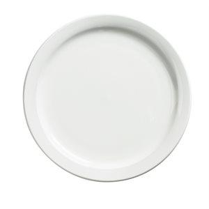 Dinner plate palm 9 po